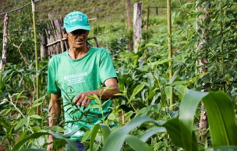 Istituzioni cattoliche chiamate a valorizzare la produzione agro-ecologica