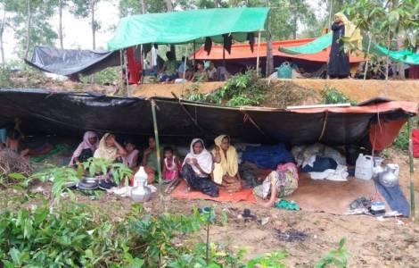 Rohingya:
